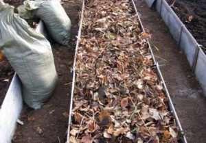 засыпаем грядку листьями